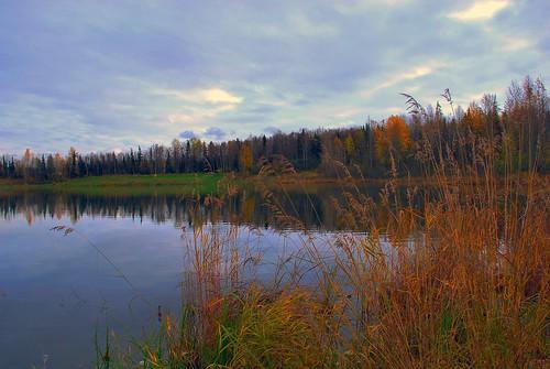 alaska anchorage greenscene outstandingromanianphotographers takucampbellpark