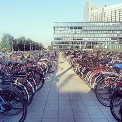Amsterdam Sloterdijk (3)
