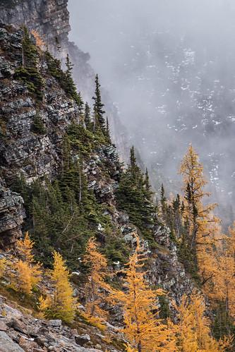 Saddleback Pass Trail | by cec403