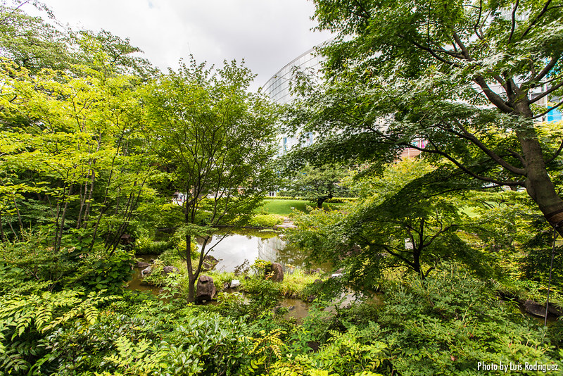 Jardín Mori