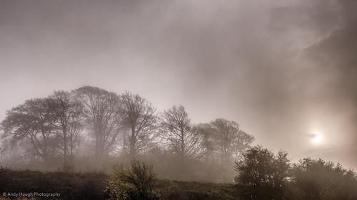 morning trees light england misty fog clouds sunrise moody unitedkingdom sony atmospheric castlehill wallingford a77 southoxfordshire sonyalpha andyhough whittenhamclumps slta77 andyhoughphotography