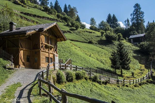 Ambiente montano - Mountain environment