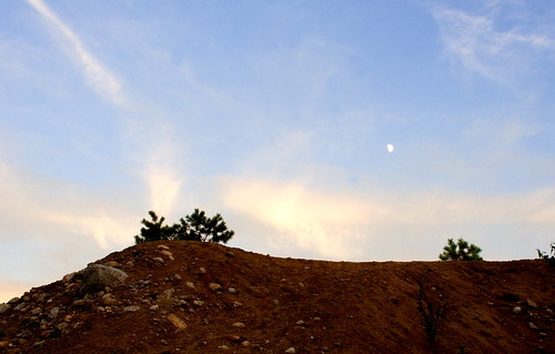 michael hill ridge stewart ©2008