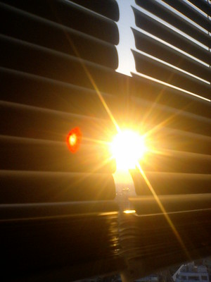 roller blinds with sun coming through