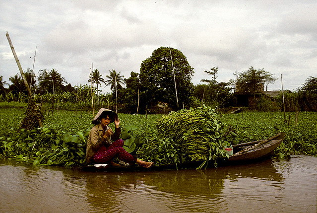 Woman in boat with crop