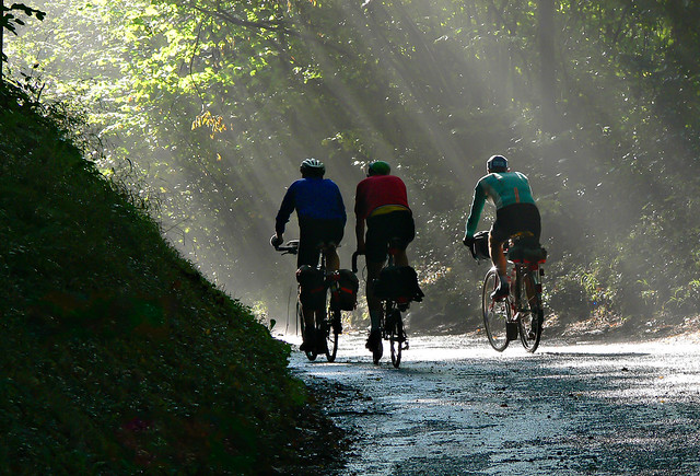 Cyclists and a Misty Morning