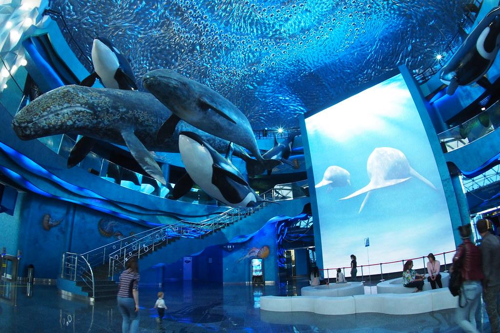 Primorskiy Aquarium Vladivostok