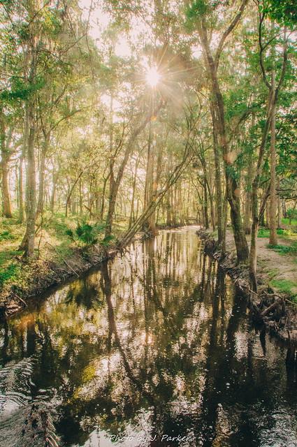 More Ichepackessasa Creek