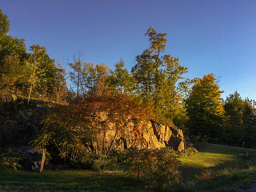 walk dogwalk neighbourhood rock light sunset dogs kanata ottawa ontario canada