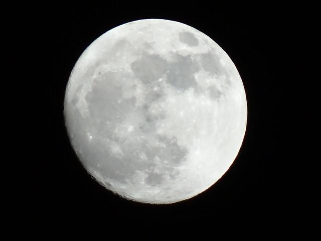 Nun wird der Aufblick um Mond langsam leer, und aus der Höhe, aus der hohen Höhe neigt die Wolke sich, sinkt Nebel erdwärts schwer, nun drängt zu dem verwandten Mond - Gesicht das Wesenlose aus den fahlen Himmelsgründen und hebt sich sehnend ins versäumte Licht 0398