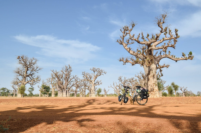 Day165-Bike-130417