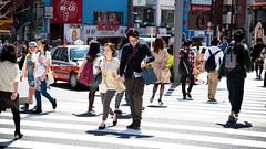 Harajuku Crosswalk