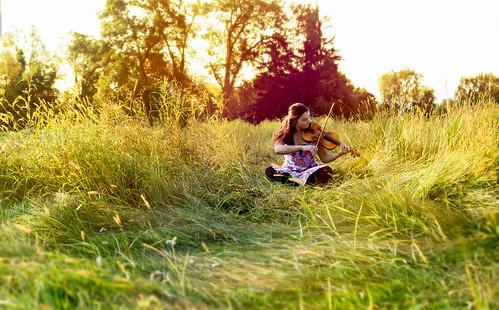 summer music field grass sunrise september violin fiddle something summery