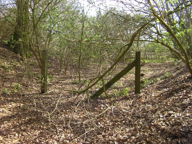 Framlingham Branch Trackbed