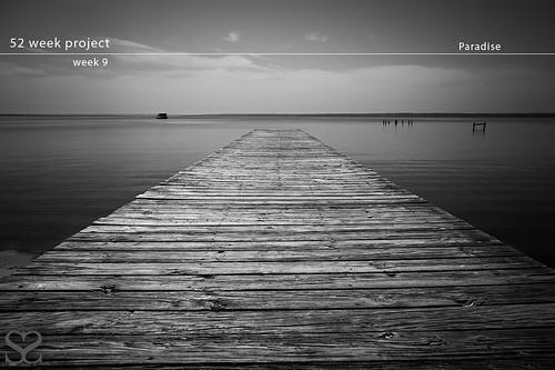 blackandwhite water bay pier nikon florida sean pensacola d3 247028 scarmack