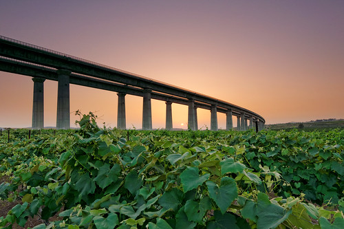 railroad bridge sunset green day sony clear grapes hitech tokina1116mmf28 sonya77 mygearandme mygearandmepremium blinkagain