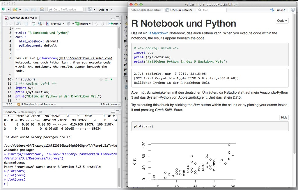 R, RStudio, R Notebook, R Markdown und Python | Screenshot