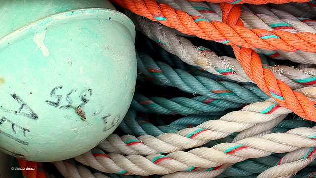 Ropes and buoy