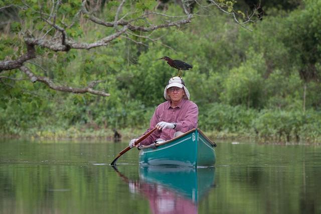 Canoe Boy Returns