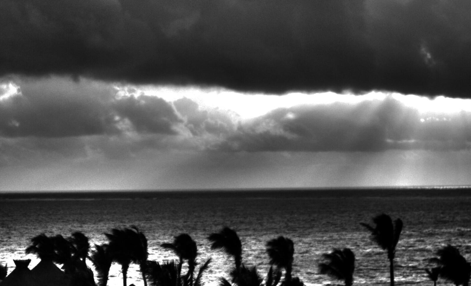 Puerto Morelos 45