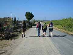 Camino_Ignatiano__0104
