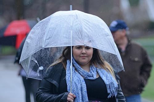umbrella (80)