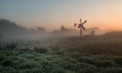 middendelfland dawn grass sunrise windmill nederlandvandaag