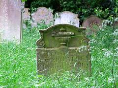 the Hoveton dead
