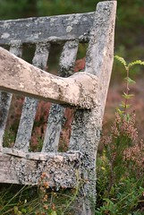 Wooden Bench, Highland style