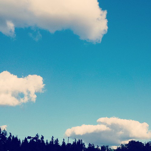 161/365 - Fluffy Clouds and Trees #project365 | by brinstar
