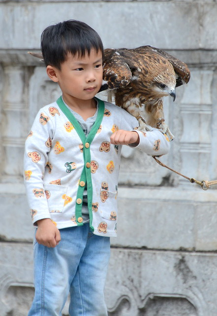 Just a boy and his bird of prey, Lijang (丽江), Yunnan Province (云南省), China (中国)