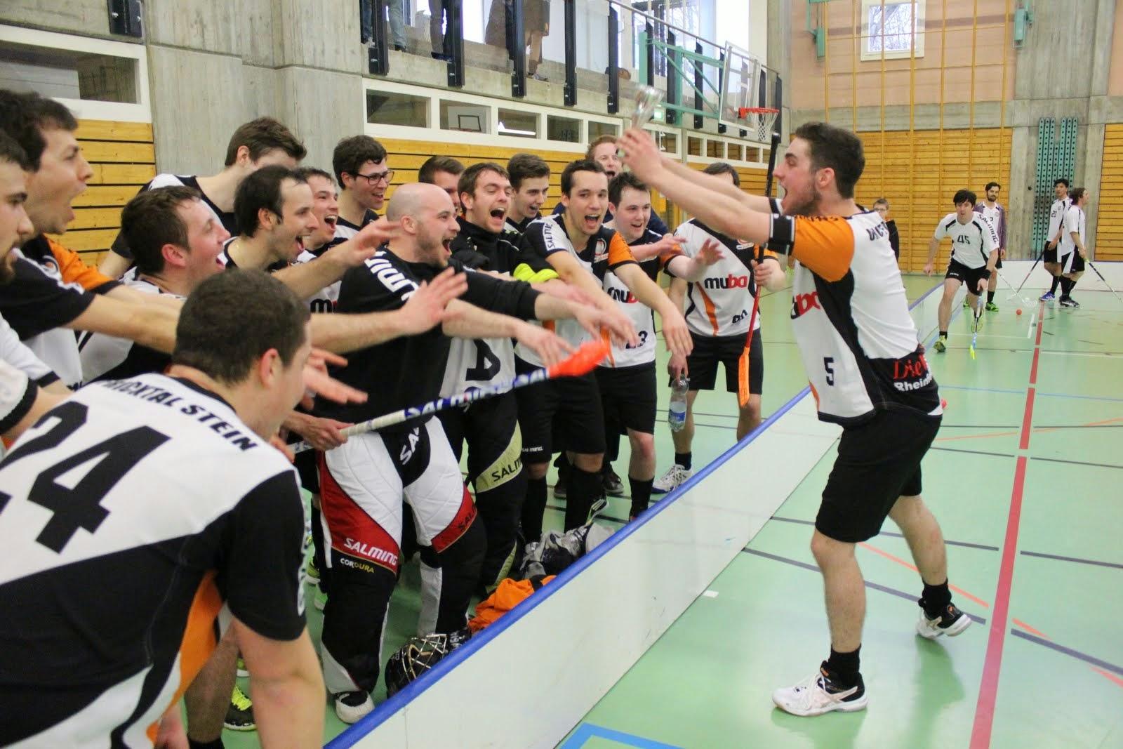 Herren 1 (9. Meisterschaftsrunde 2014/2015)