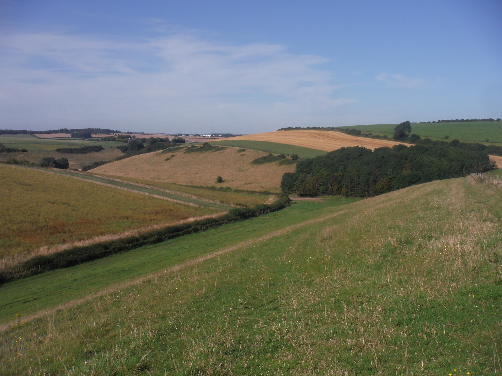 Ridge Bottom, off Great Hill SWC Walk 275 Dorchester South Circular or to Portesham