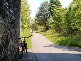 The Fallowfield Loop at Yew Tree Road