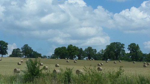 2018 outdoor sky clouds springfieldmo springfield springfieldmissouri farm farming field haybales roundhaybales roundhaybale greenecounty ozarks midwest scenic landscape hay weeds