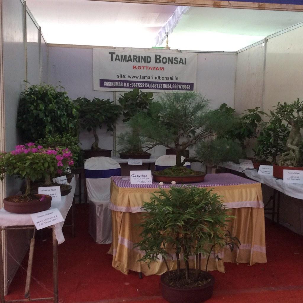 A stall by Tamarind bonsai, at Global Organic Farming Meet organised by Mahatma Gandhi University, Kottayam. -