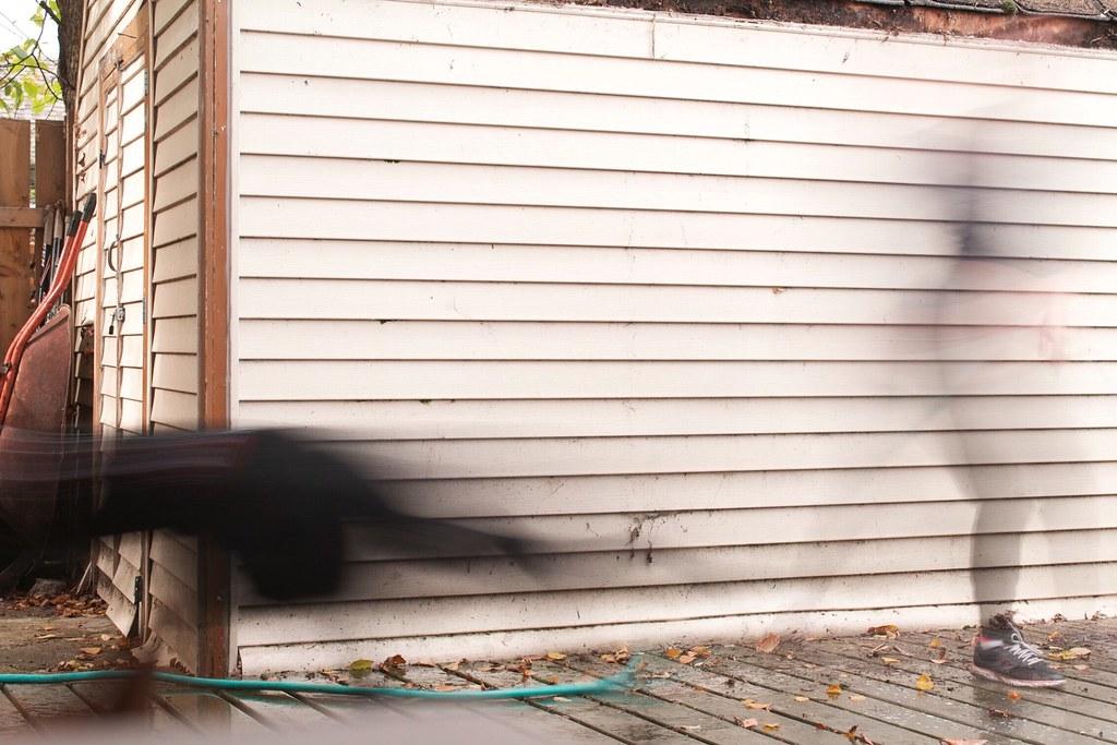 Capturing Movement Motion Capture Black Dog Human Walking
