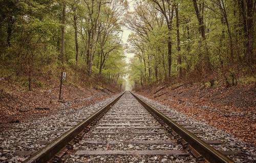 wood railroad trees train rocks path nowhere tracks 2013project5217