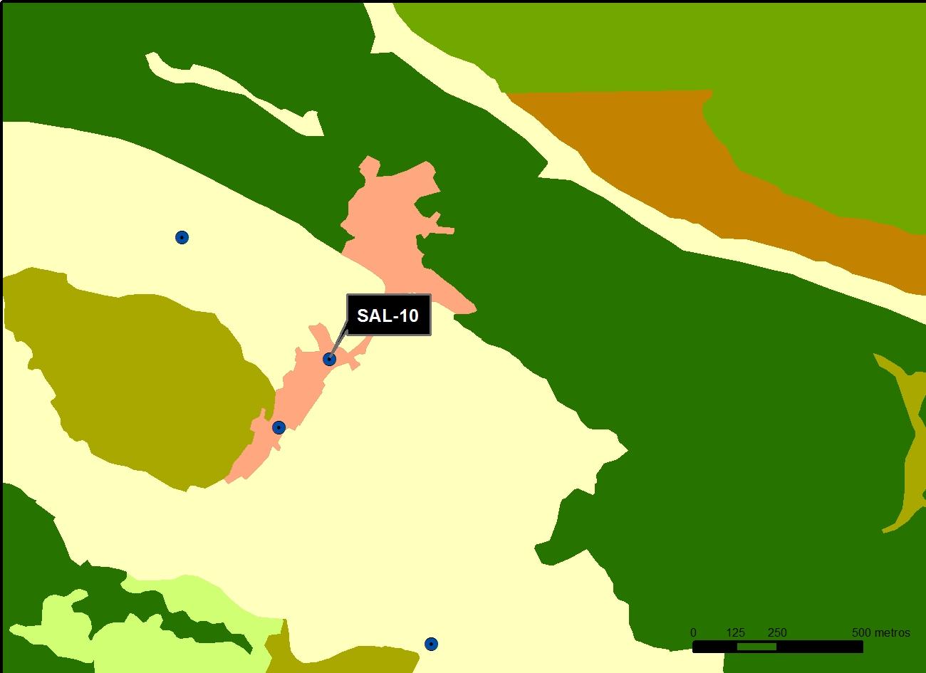 SAL_10_M.V.LOZANO_POZO LAS ERAS_MAP.VEG