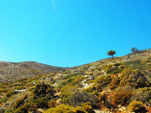 greece kalymnos pserimos mountain fauna dry dodecanese island sky landscape bushes mountainscape tree nature outdoor hiking