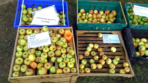 Apple day 2016-14 | by grow_bradford