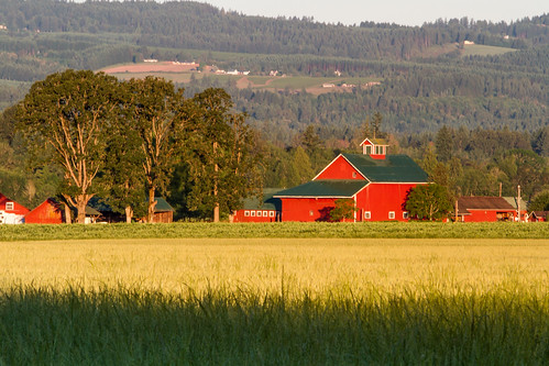 red oregon barn canon acratech reallyrightstuff rrs washingtoncounty canon70200f28l eos7d midvalleyfarm