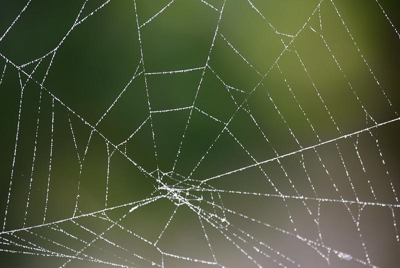 Web 15.10 (8)