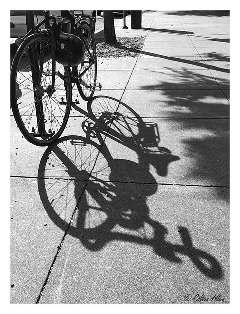 Shadow Cycle