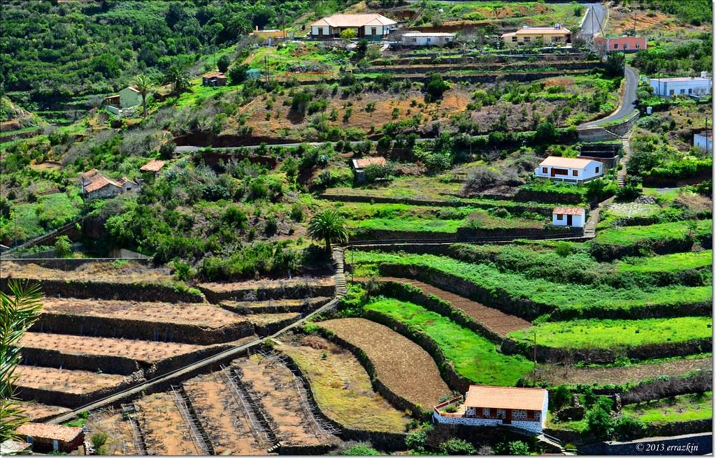 Terrazas De Cultivo Farming Terraces Gomera Islas Canaria