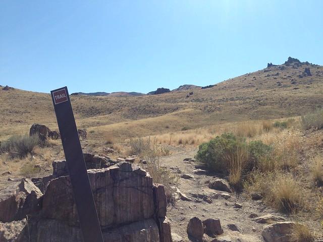 Frary Peak & Dooley Knob Trail, Antelope Island State Park