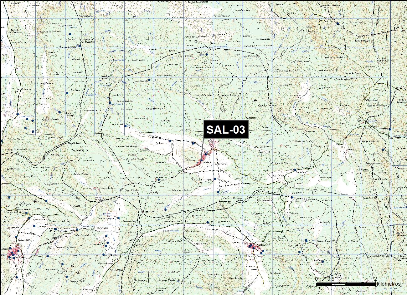 SAL_03_M.V.LOZANO_VIEJA_MAP.TOPO 1
