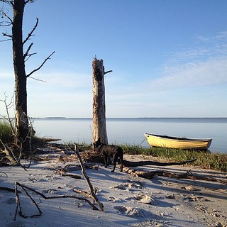 Ashore at Cedar Island, #nc #travel #sailing #cruising #offtheICW | by kindreds unite