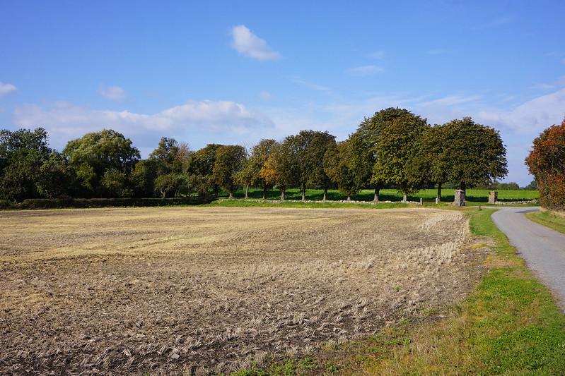 Omkring-Kaedeby-oktober-2015 (23)