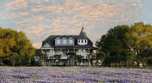 texas brenham chappellhill wildflowers bluebonnets beautiful house spring prairie flowers trees sunset clouds wyojones np